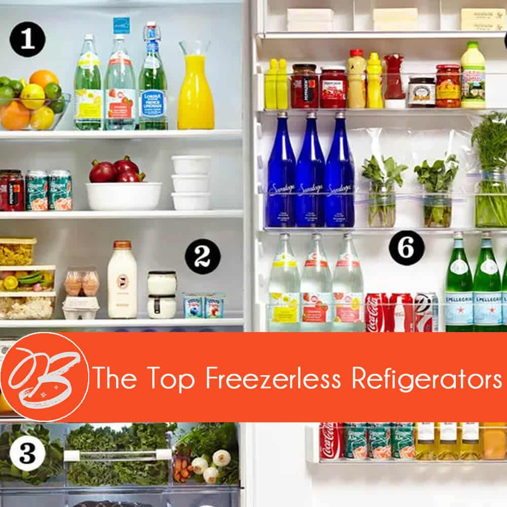 freezerless-refrigerator-review